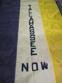 Tallahassee National Organization for Women parade banner ca. 1970's.