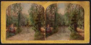 Vue dans Le Bois de Boulogne a Paris, ca. 1850-1900