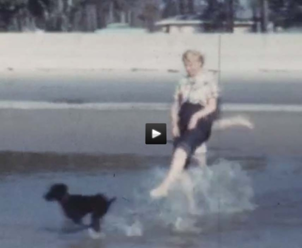 Dog and people at beach, 1954