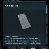 a finger tip